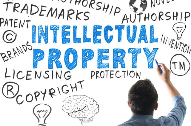 Intellectual Property Enforcement Guidelines